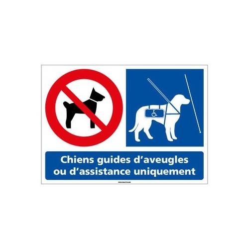 Panneau chiens interdits sauf chiens guides d'aveugles PVC