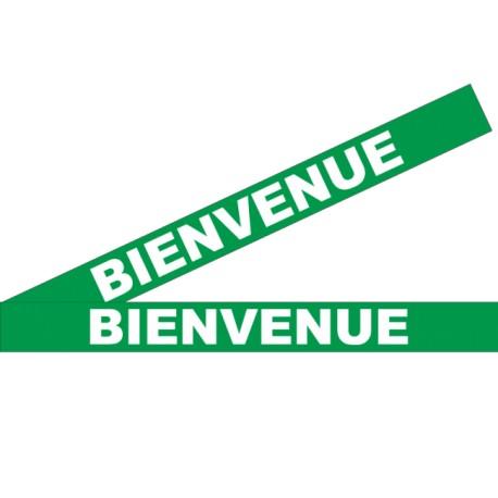 """Bandes adhésives pour repérage des portes vitrées 100 mm - """"Bienvenue"""" vert"""